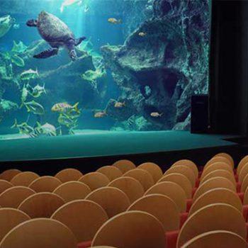 Aquarium_La_Rochelle